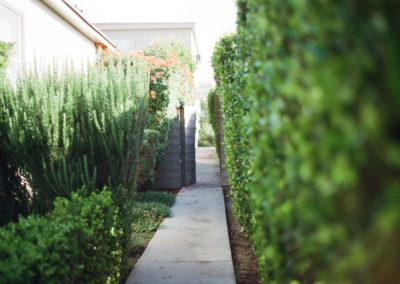 viale-giardino-casa