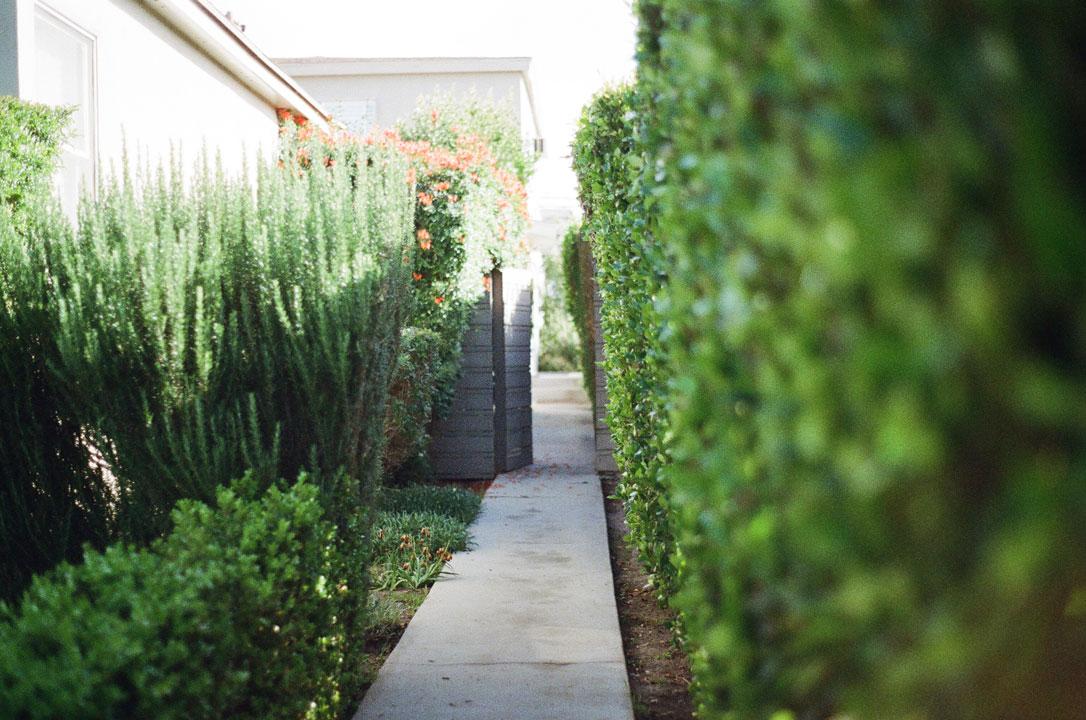 viale giardino casa
